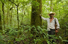 Abel, a forest warden protecting biodiversity-rich forests in the Sierra Gorda.: Photograph by Roberto Pedraza Ruiz