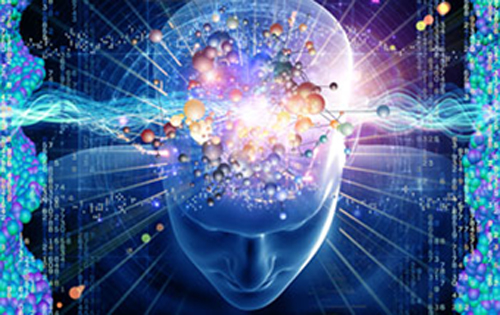Understanding the brain means knowing the fundamental principles underlying brain structure and: function. From the Fact Sheet:Understanding the brain: the National Science Foundation and the BRAIN Initiative Image from Thinkstock courtesy of the National Science Foundation