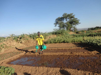 A member of the refugee community at the Kakuka refugee camp watering his vegetables.: Photograph © UNESCO/Nairobi Office