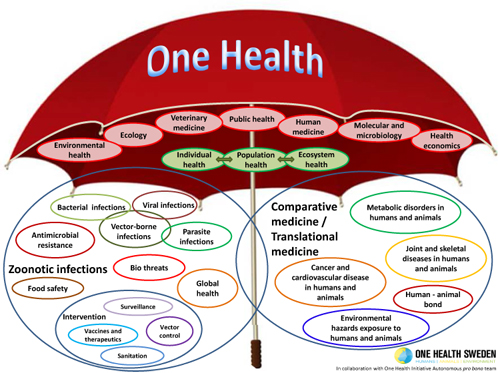 One Health Umbrella created by and courtesy of One Health Sweden: Humans, Animals, Environment in collaboration: in collaboration: with One Health Initiative Autonomous pro bono Team
