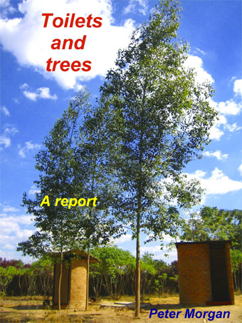 Trees as Recyclers of Nutrients